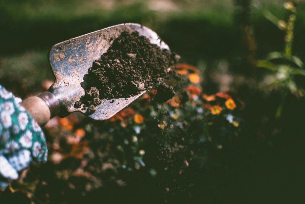 person-digging-on-soil-using-garden-shovel