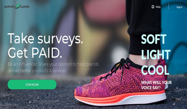 Survey Junkie online survey