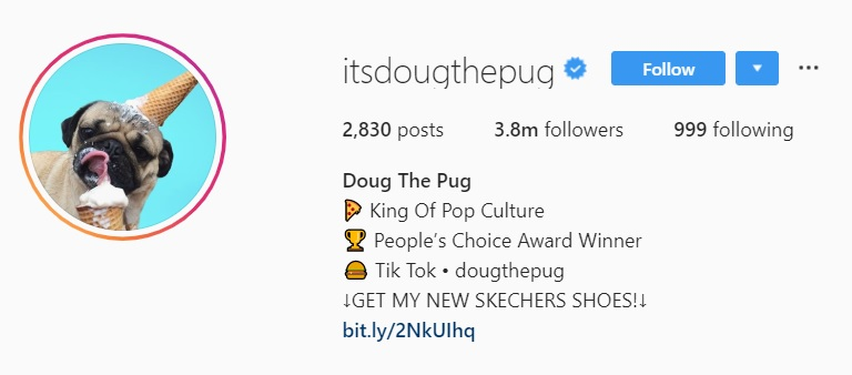 Doug the pug Instagram