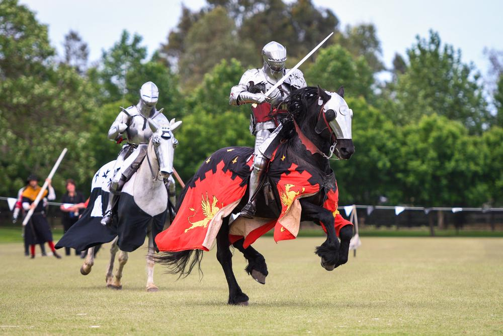 Thoroughbred race horses will wear jousting costumes with giant number cloths in all races in the UK to cater for the partially-blind.