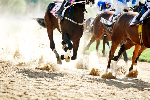 Jockey sacked for not swerving