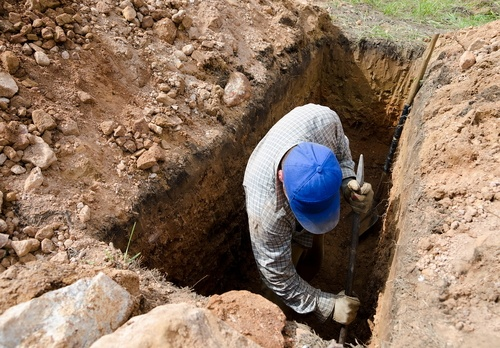 bookmakers dig up graves of dead winning punters