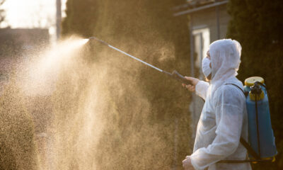'Nothing to do with Corona' says bookmaker DISINFECTING punters
