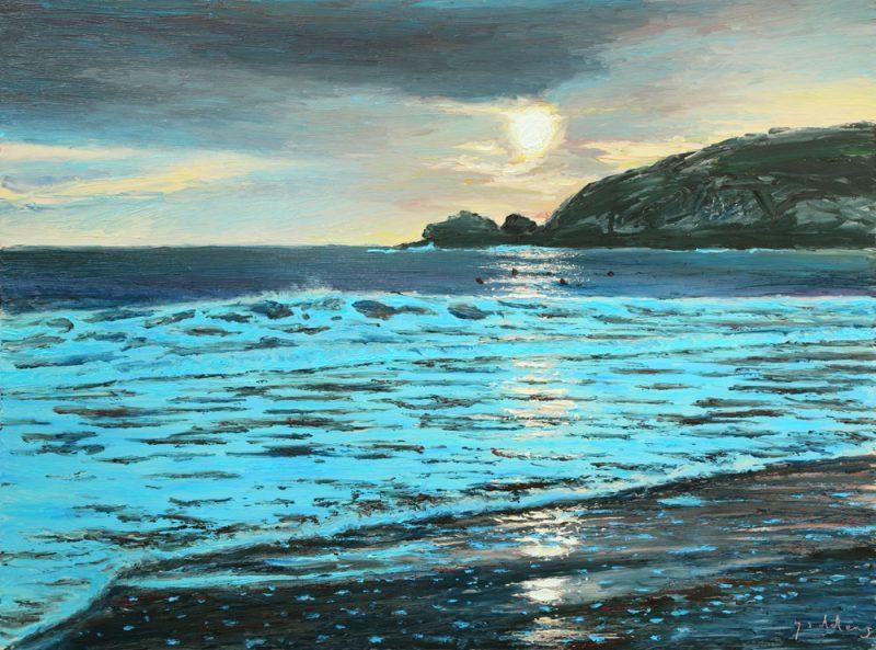 Cornish Cove