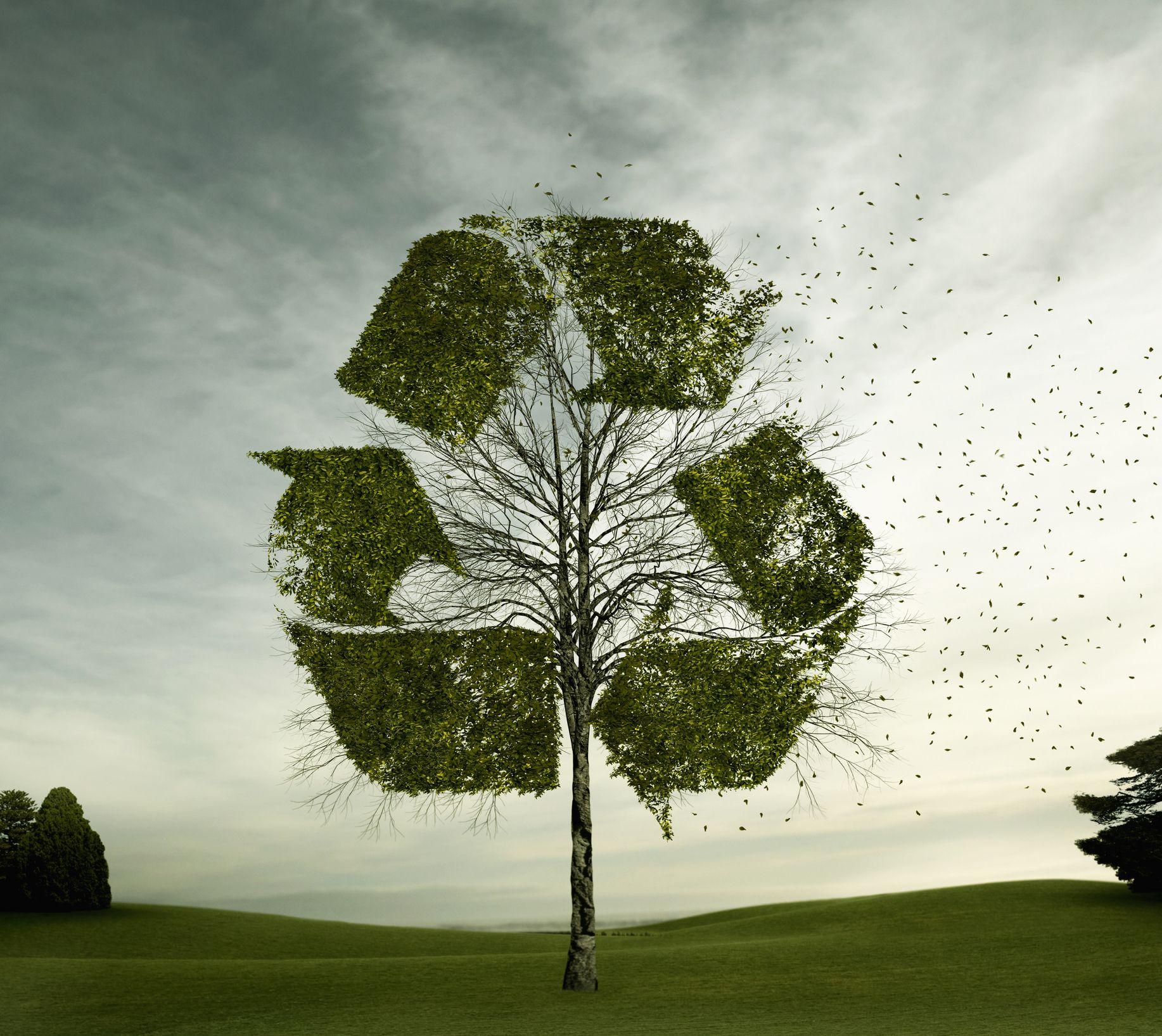 AGI Recyclability