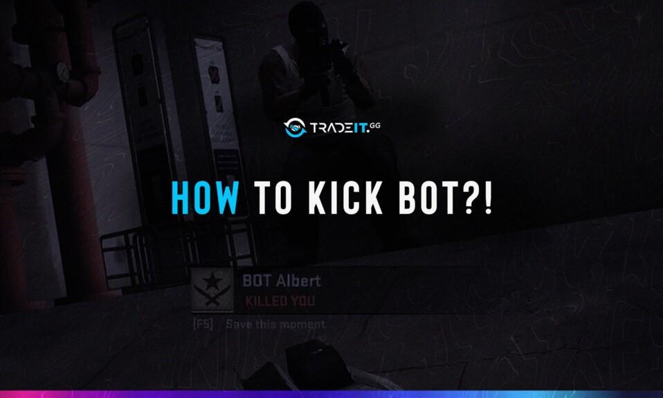 how to kick bots csgo remove