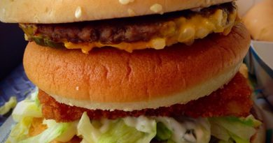 McDonald's Land, Sea & Air Burger