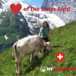 Heart of the Swiss Alps
