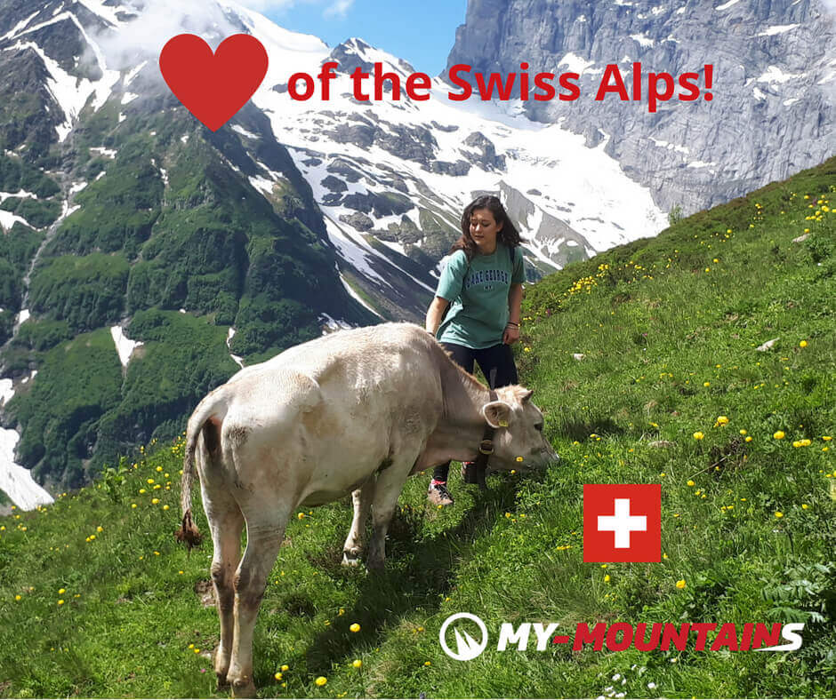 woman hiking cow glacier Switzerland heart my-mountains