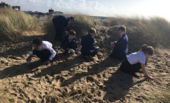 class on sands