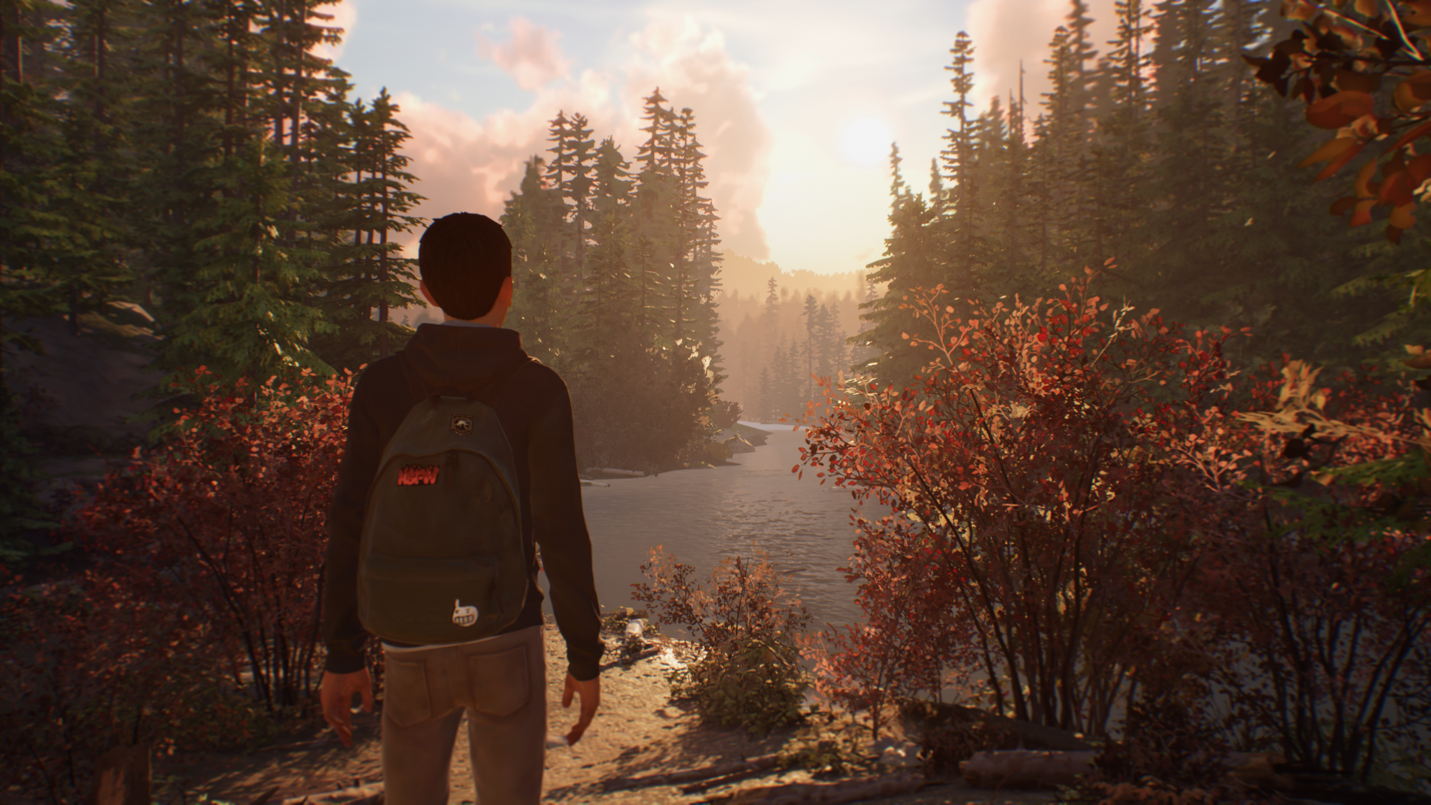 Life is Strange 2 Looking Forward