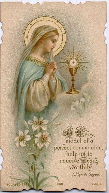 Parish Devotion for December 12th 2019 – Thursdays – Month of The Immaculate Conception