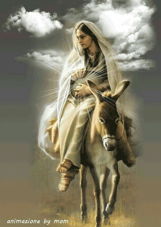 Parish Devotion for December 4th 2019 – Wednesdays – Month of The Immaculate Conception