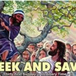 Newsletter: 3rd November 2019 - 31st Sunday in Ordinary Time Year C