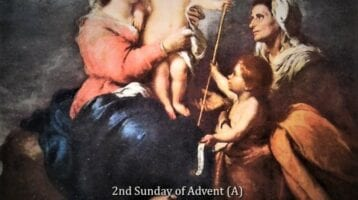 Newsletter: 8th December 2019 – Second Sunday of Advent Cycle A