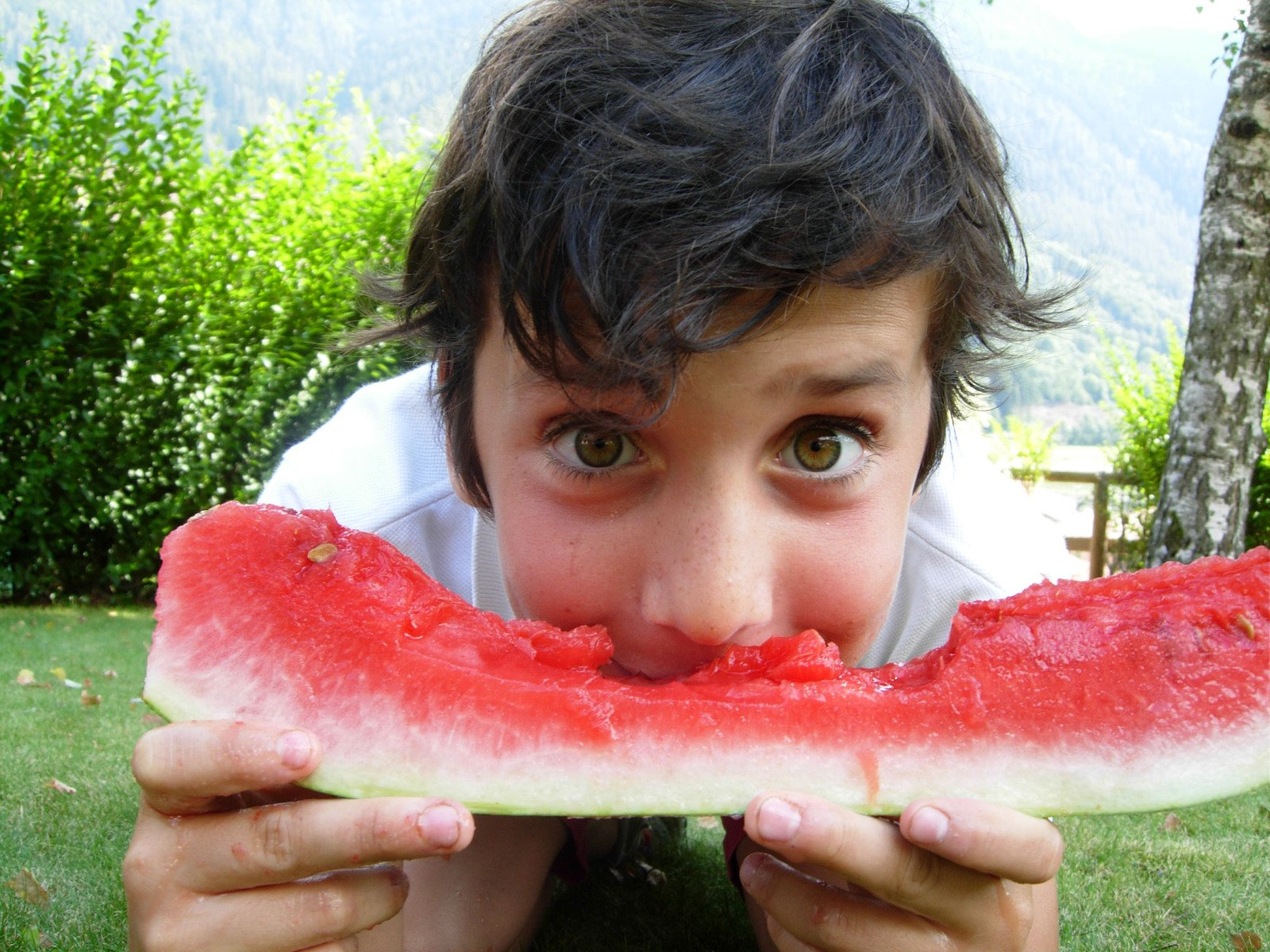 diving-in-a-watermelon-1320508