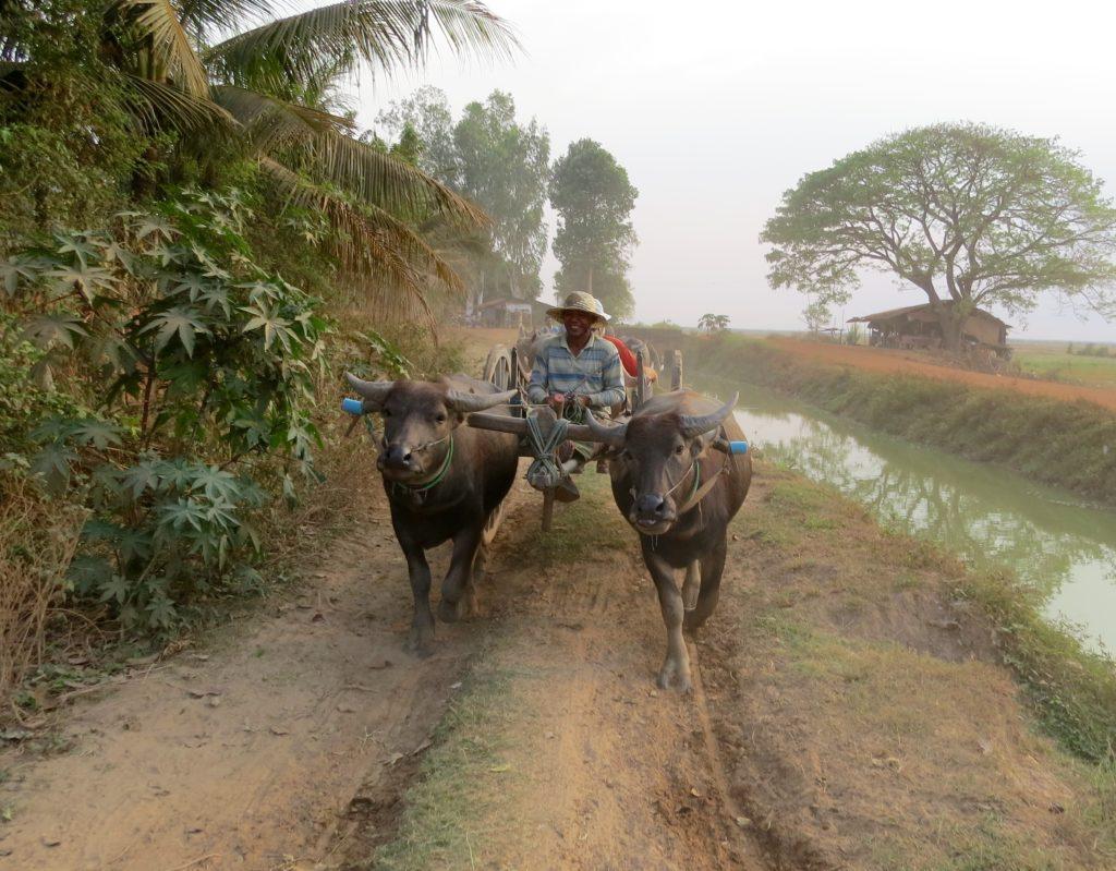 Explore and Discover Cambodia