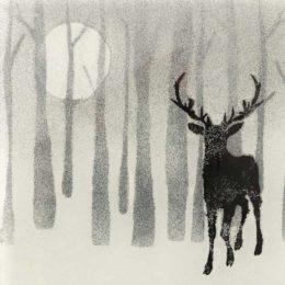 In The Woods Design