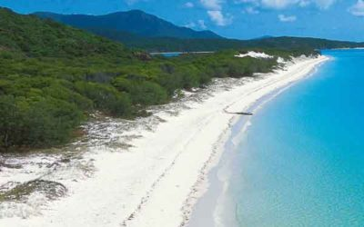 Whitehaven Beach Tour – Matador Whitsundays Tours