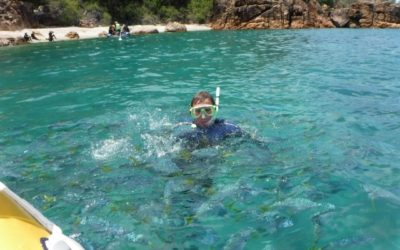 Whitsundays Snorkeling – Matador Whitsundays Tours