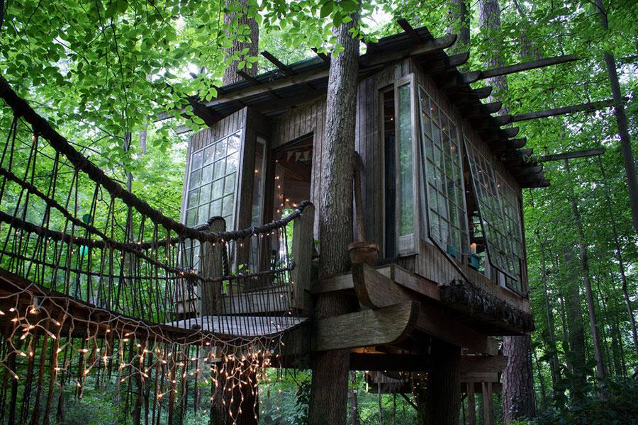 arboreal retreat