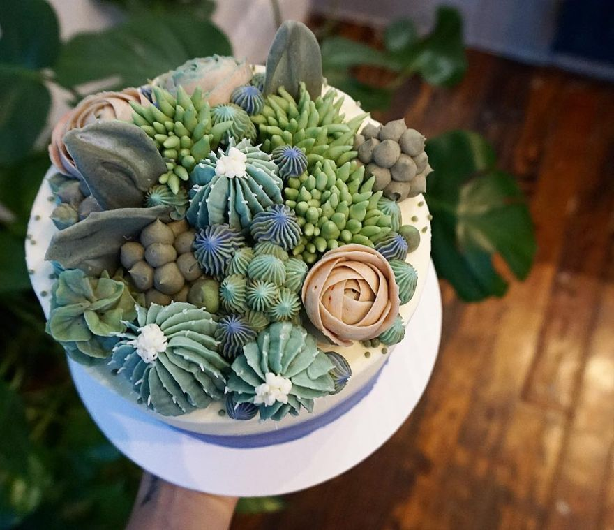best Cactus cakes