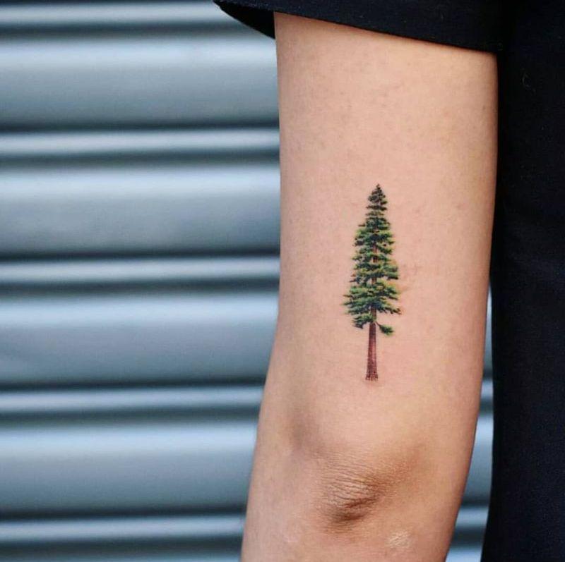 creative tree tattoo ideas