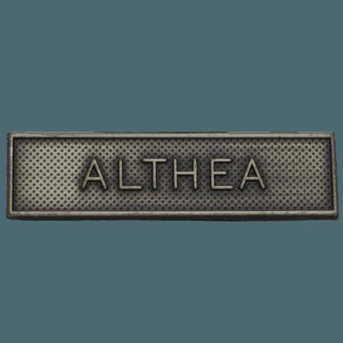CSDP ESDP Althea Clasp