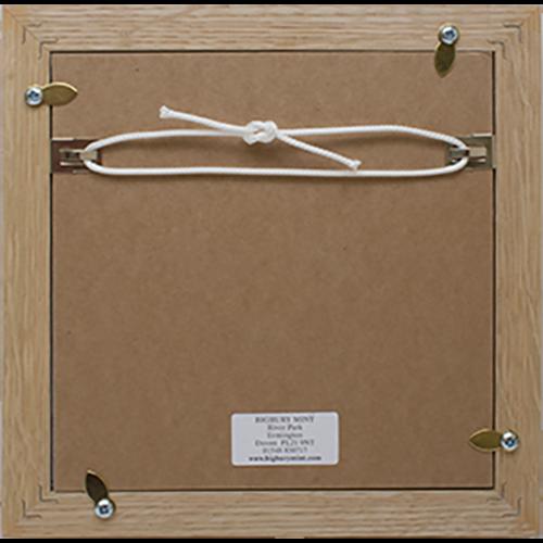 Medal Display Frame Reverse