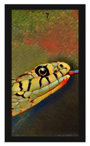 Lenormand Snake Card