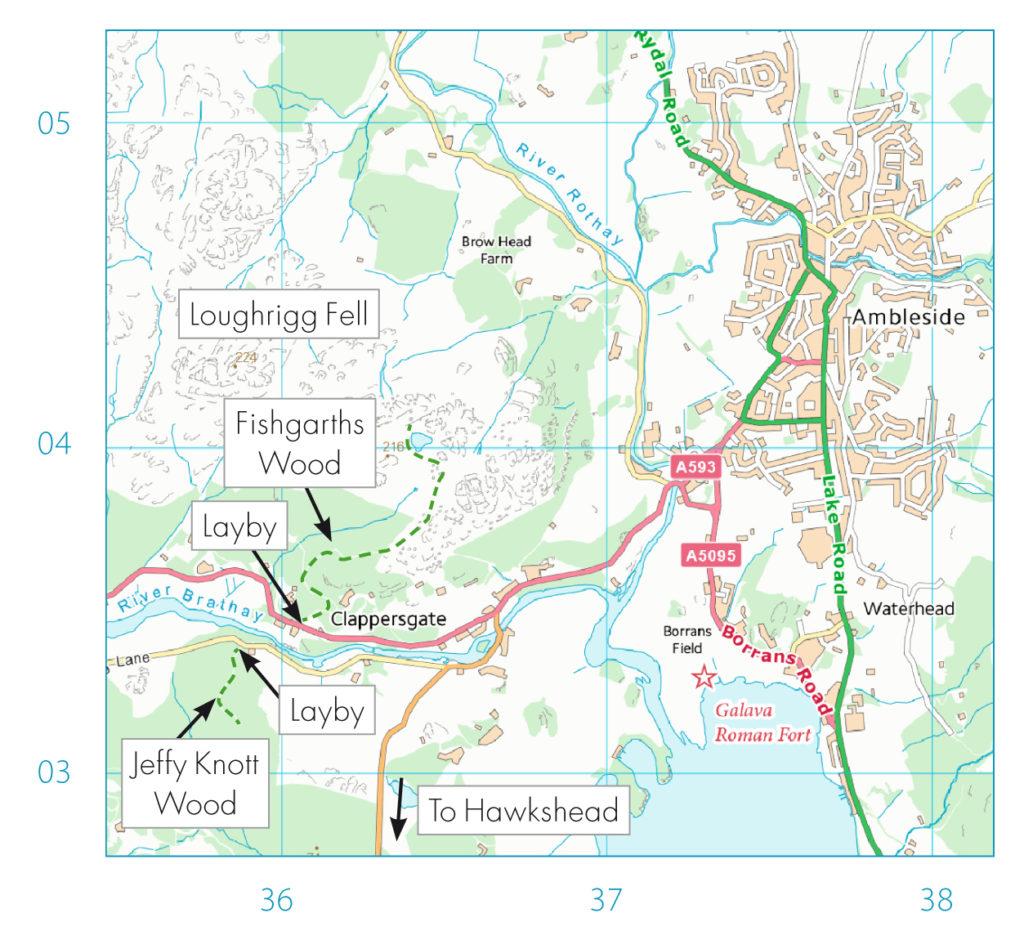 Ambleside bluebells map