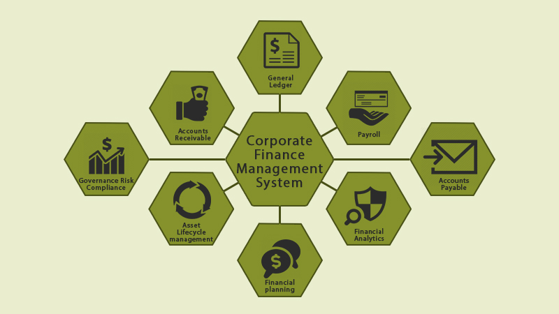 Corporate Finance Management System
