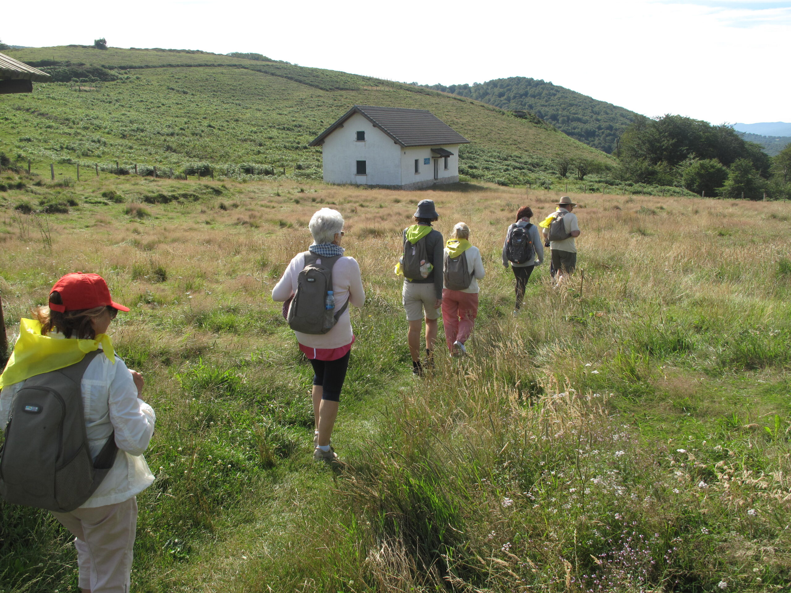 Guided Camino tours