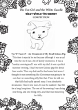 Tye W. Year 6P Beechview Part 1