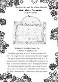 Windsor D. St Brides Primary P6 Part 1