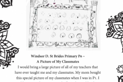 Windsor D. St Brides Primary P6 Part 1