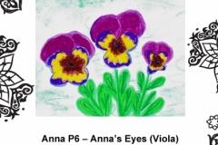 Anna Kanibolotska P6 Tinto Part 1