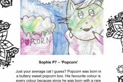 Sophie McMahon P7 Townhill