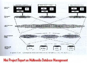 Mini-Project-Report-on-Multimedia-Database-Management