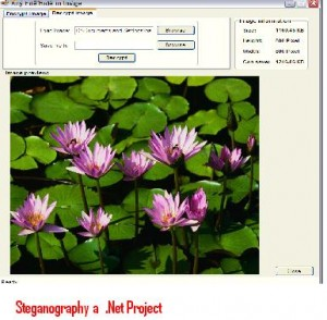 Steganography-a -Net-Project