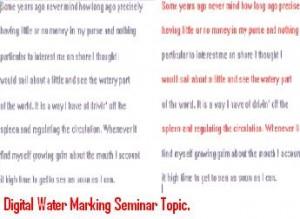 Digital-Water-Marking-Seminar-Topic.