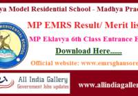 MP Eklavya School Result