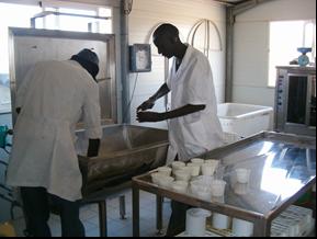 Proyecto integral agropecuario (Gandiaye)
