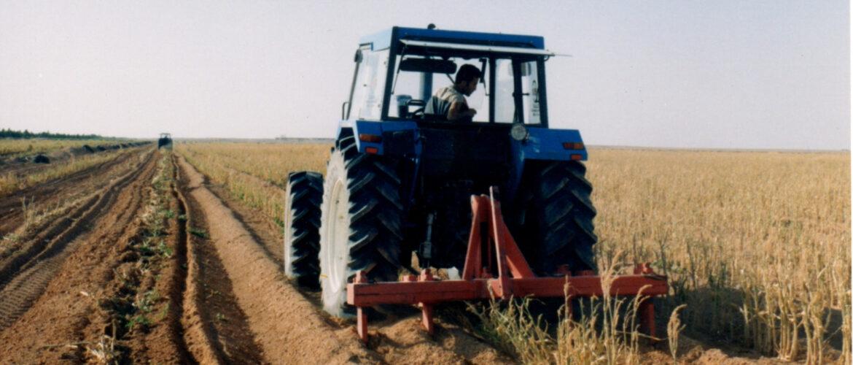 Proyecto Agroalimentario Integral C.A.A.S. en Adrar (Argelia)