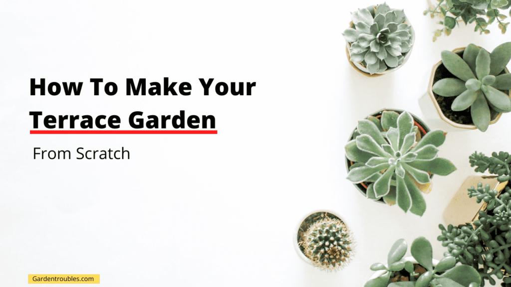 How to make terrace garden