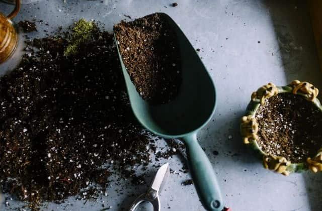potting soil for gardening