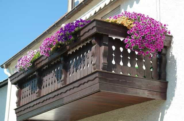 Flower balcony garden