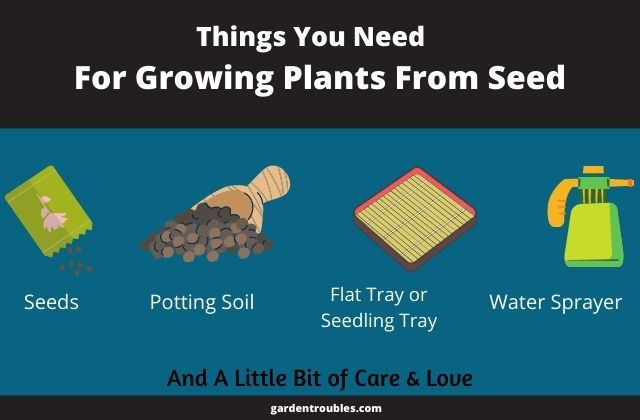 Things required to plant a seed