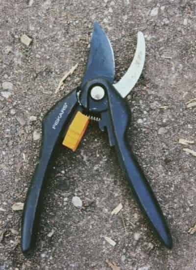 Pruner - Garden tool