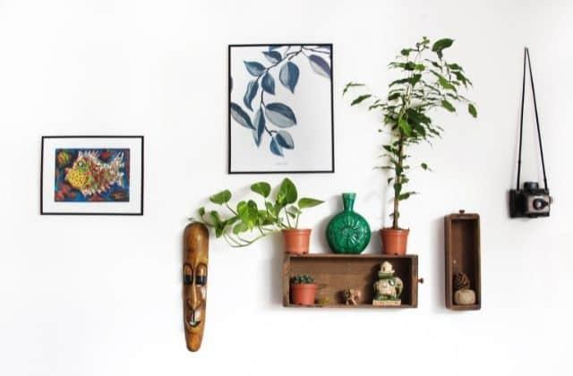 best bedroom plants in india